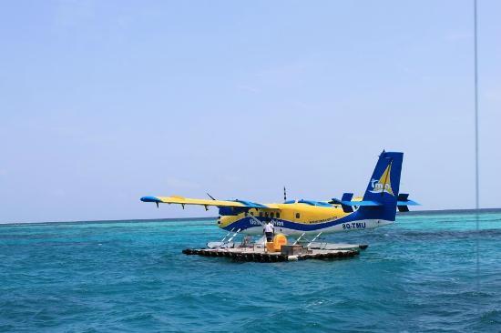 Coco Palm Dhuni Kolhu: Wasserflugzeug