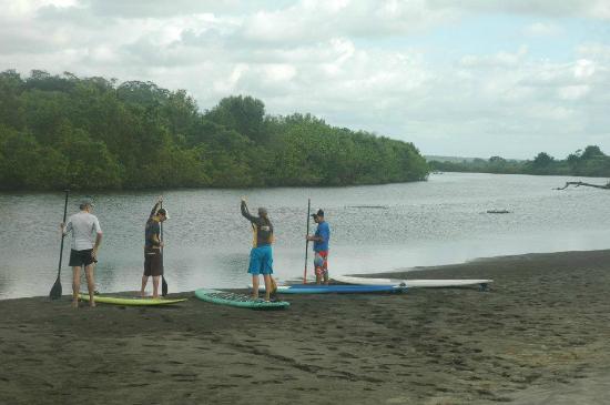 Agua Vida Surf: Playa Tortuga SUP class/bird watch!
