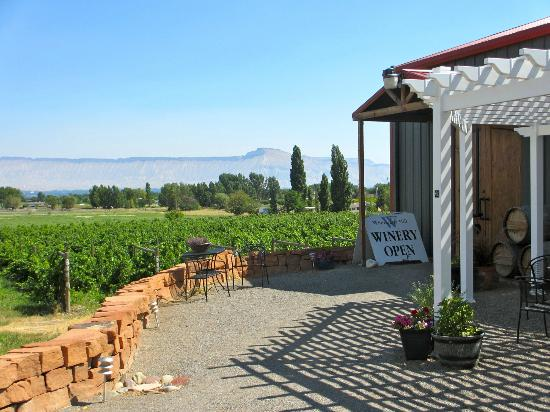 Whitewater Hill Vineyards: Overlooking the pretty vineyard from winery entrance