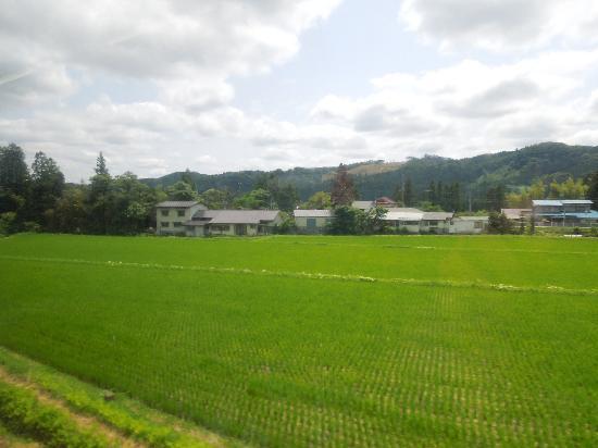 Kawatabi Onsen: 田んぼと山の緑がキレイです