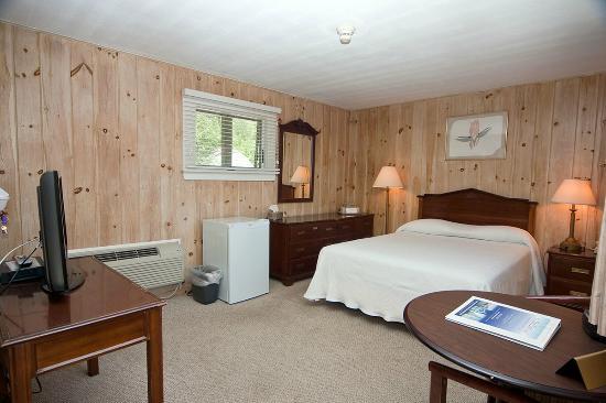 Sea Lion Motel 2 5 Gloucester