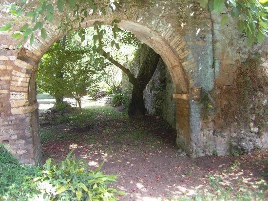 닌파 공원 - 천연기념물 사진