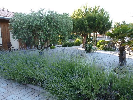 Hotel des Dunes : Front garden