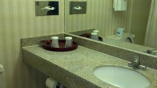 Days Inn Albany Airport: Bathroom