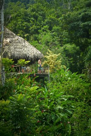 Tulemar Bungalows & Villas: Rafiki eco-lodge
