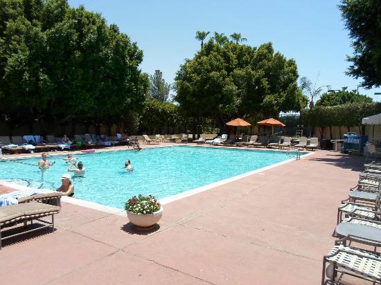 Sheraton Crescent Hotel: Pool