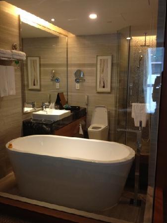 Grand Skylight International Hotel Guanlan: 浴缸和淋浴