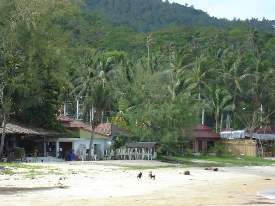 Samui Garden Home: Vue depuis la plage
