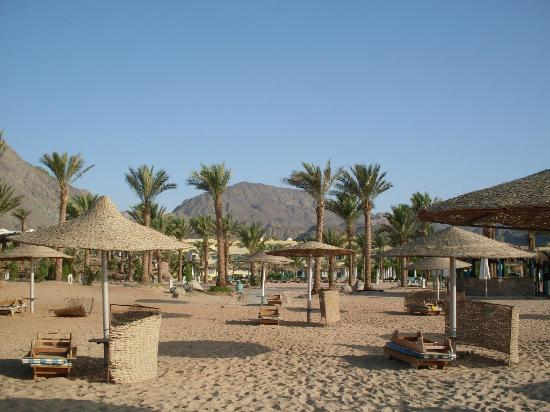 The Bay View Resort Taba Heights: Beach