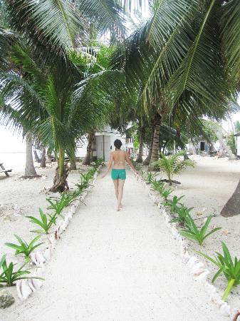Tobacco Caye Paradise: the path on the way to the dining room