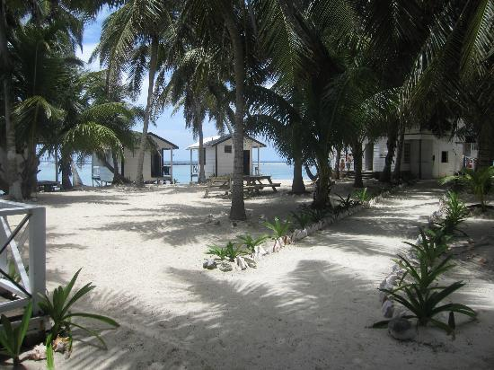 Tobacco Caye Paradise: the grounds