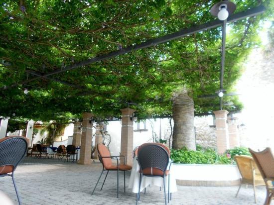Hotel La Torre : Giardino