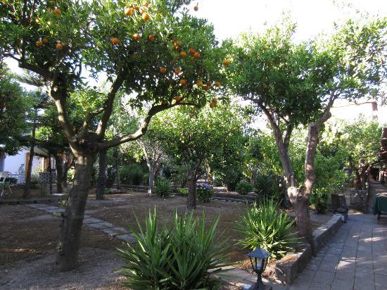 The garden at i giardini di tasso picture of i giardini for Garden giardini
