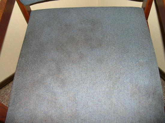 Executive Lodge Fond du Lac: Another picture of the stained chair in our room