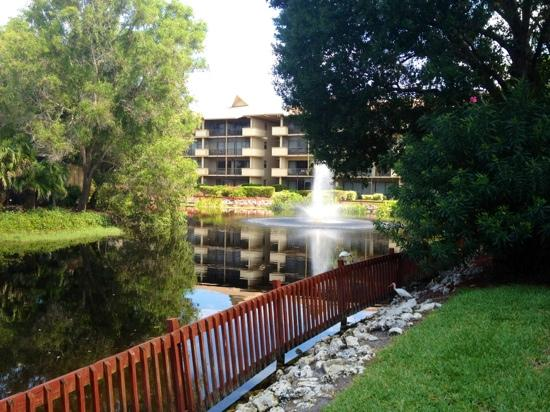 Park Shore Resort : Hotel Grounds