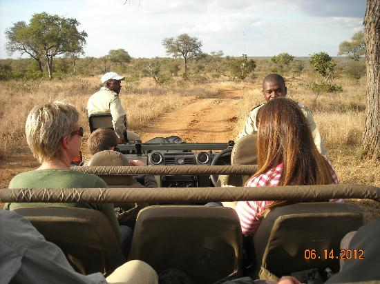 Umlani Bushcamp: Game Drives- Twice/day!