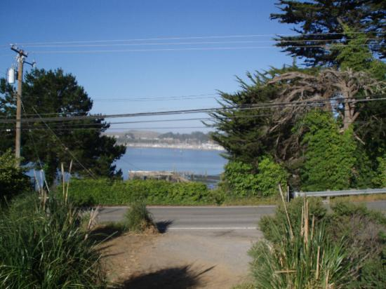 Bodega Harbor Inn: View from the parking lot