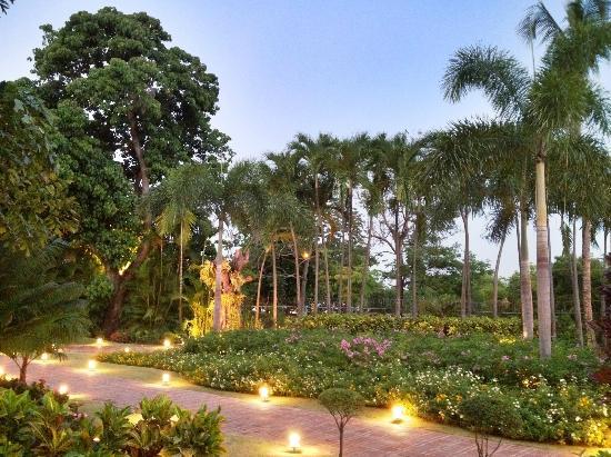 أوكسيدنتال إل إمباجادور: Gardens