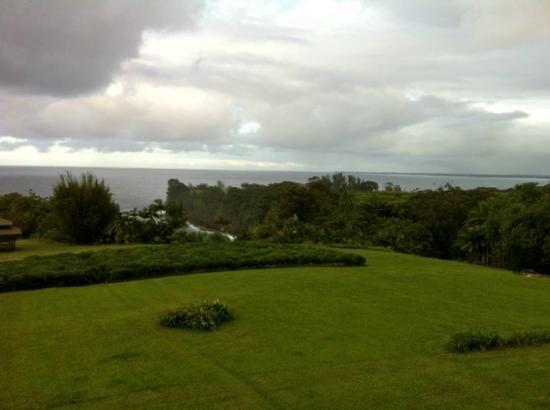 Onomea Tea Company: View from dinner balcony