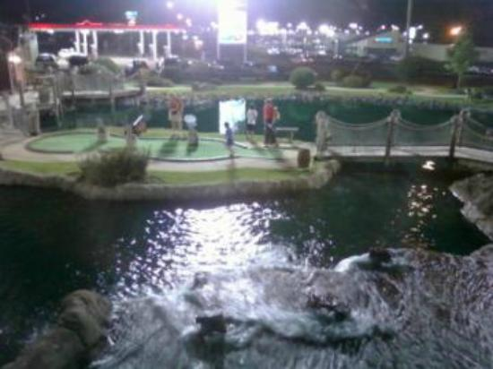 Pirate's Cove Adventure Golf : Pirate Cove Golf Course
