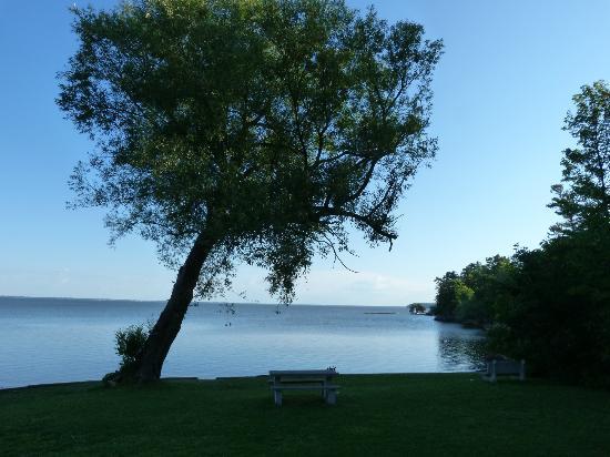 Tyler Place Family Resort : Scenic Beach