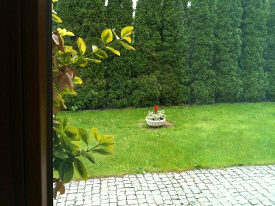 Villa Del Arte Bed & Breakfast: Garden (view from Restaurant)