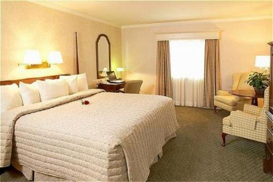 Inn at Reading: King Guest Room