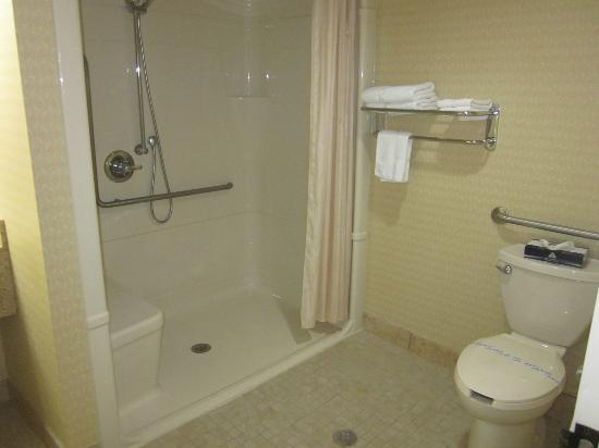 Monte Carlo Inn Barrie Suites: ideal shower(with built-in seat) for seniors