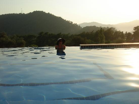 the escape: Pool views