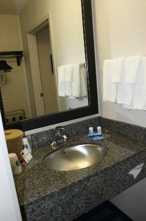Fairfield Inn & Suites Lancaster : Bathroom