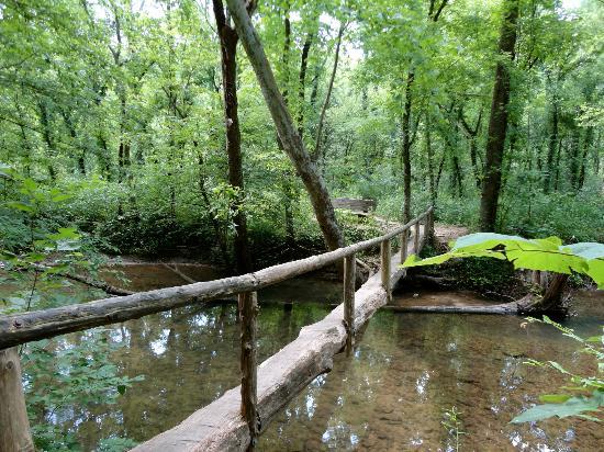 Walls of Jericho: walking bridge