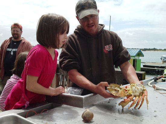 Kelly's Brighton Marina: Nyree learning about crabs from Kenny.
