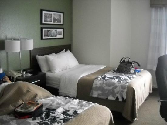 Sleep Inn: Room