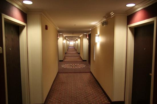 Holiday Inn Express Phoenix Downtown: hallway to my room