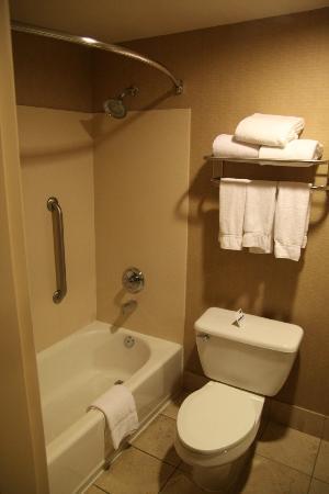 Holiday Inn Express Phoenix Downtown: Bathroom