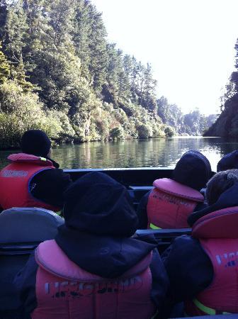 New Zealand Riverjet: Tutukau Gorge