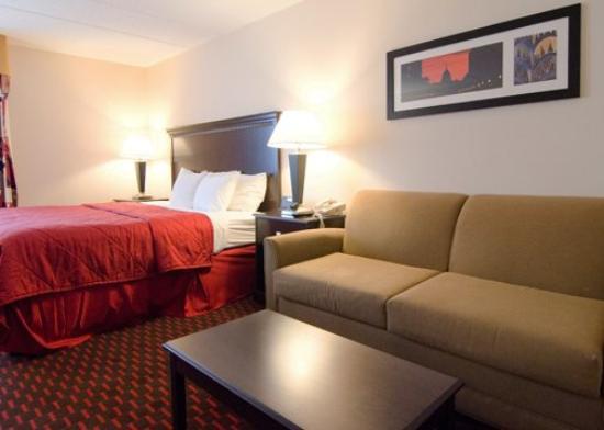 Comfort Inn Annapolis: MDQueen Couch