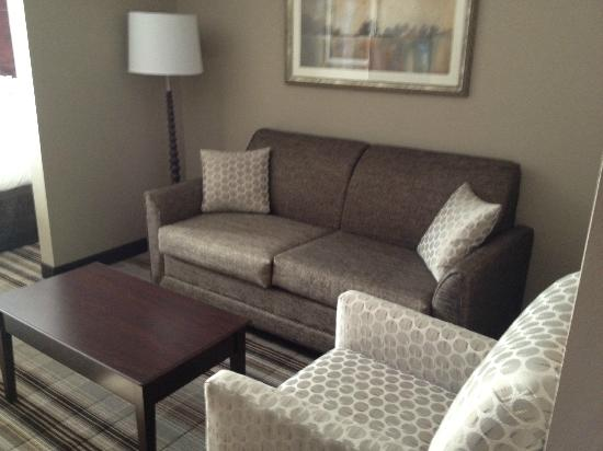 Comfort Suites Hudson: Sitting area 