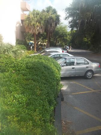 Metropolitan Hotel Hilton Head: Your front parking????