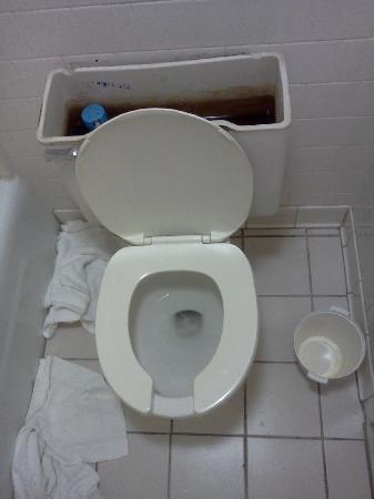 Sandston Inn : Our toilet situation :(