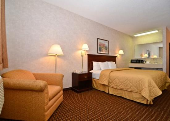 Quality Inn & Suites: King Ste
