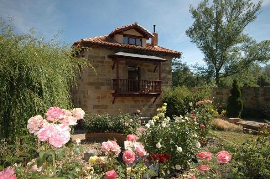Molino del Alto Ebro: Molino