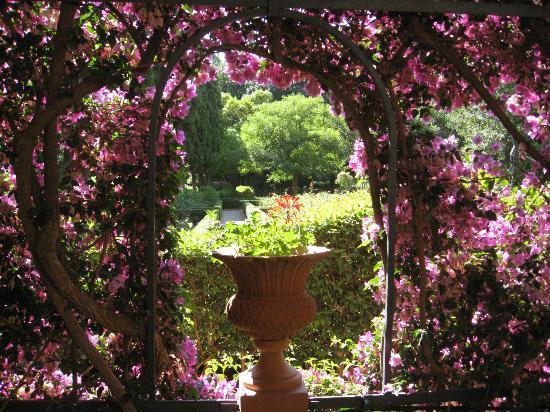 Jardines de Monforte : Jardin de Monforte