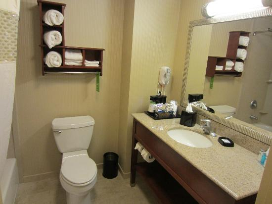Hampton Inn and Suites Arcata, CA: Bathroom
