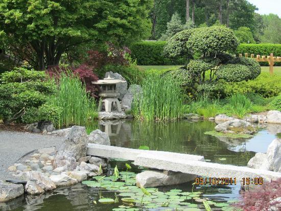 Japanese Garden - Picture of Norfolk Botanical Garden, Norfolk ...