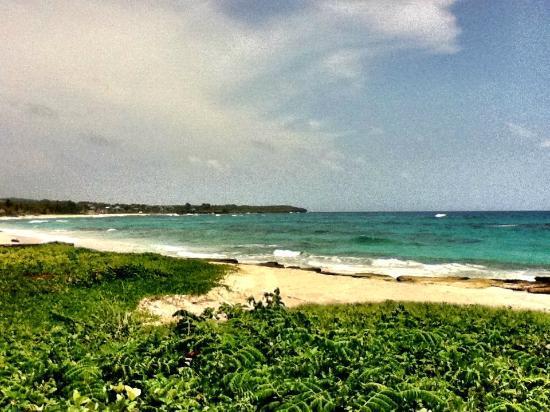 The Resort at Wilks Bay: Long Bay