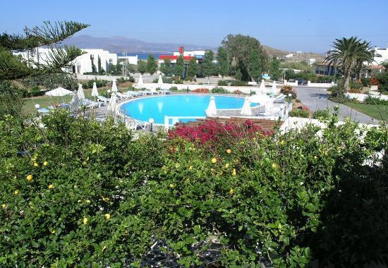Birikos Studios: Pool