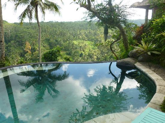 Taman Bebek Resort & Spa: plunge pool with glorious view