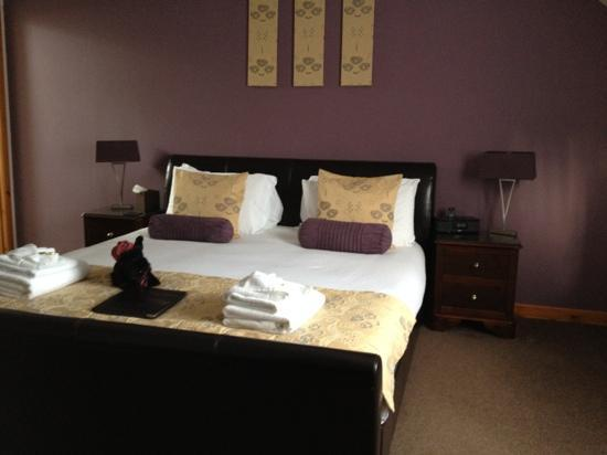 Avalon Guest House: Spacious n contemporary room