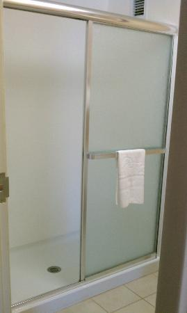 Homewood Suites Rochester/Greece: now this is a shower